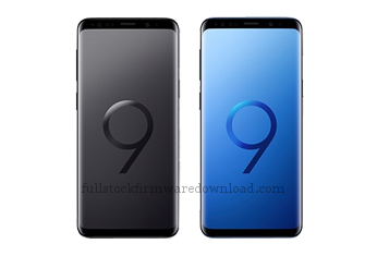 Full stock firmware, full factory firmware, full 4 files firmware for Samsung SM-G965F/DS Galaxy S9+ TD-LTE (Samsung Star 2) (Android 10 Q)